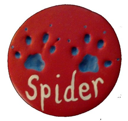 Spider Paws 3 a
