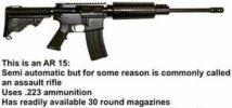AR 15 100