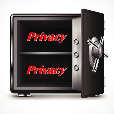 Privacy Safe 400
