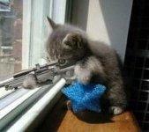 Sniper Reversed 150