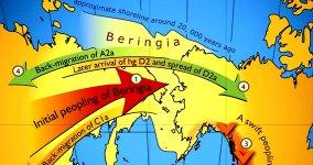 Beringia 150