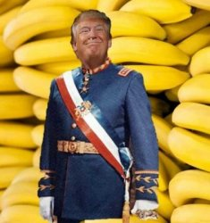 Trump Banana Republic 250