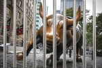 Bull behind Bars 100